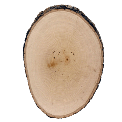 Basswood Country Round® - Medium
