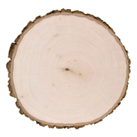 Basswood Country Rounds® - Thick 9-11.5""