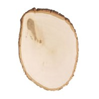 Rustic Basswood Round®, Extra-Large