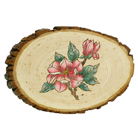 Magnolia-Flower-Plaque-Wood-Burning-Project