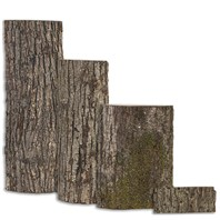 Basswood Country Slabs